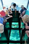 Bora-Bora-Glass-Bottom-Boat-guide-510x770.jpg