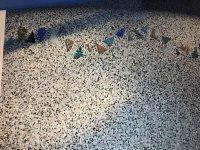 Lightstream beach shells on pebble.JPG