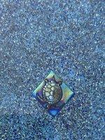 2021 08.25 turtle lane marker.jpg