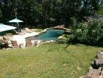 Pool build organic deck.jpg