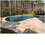 pool pebble2.png