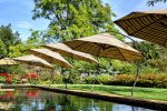 pool-shade-ideas-umbrellas.jpg