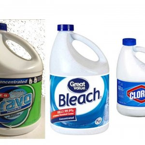 Bleach Post.jpg