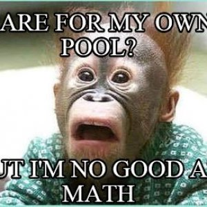 Care for Pool, But Not Good at Math.JPG