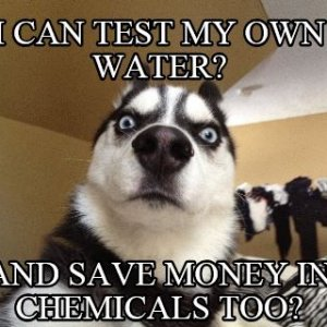 Husky Test My Own Water.JPG