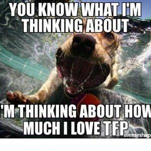 Thinking How I Love TFP (Dog).jpg